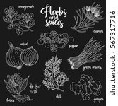 spices and herbs set to prepare ... | Shutterstock . vector #567317716