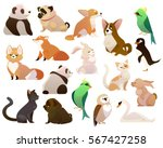 Stock vector cute cartoon style d animals collection vector illustration 567427258