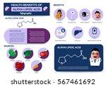 health benefits of alpha...   Shutterstock .eps vector #567461692