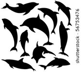 Vector Dolphins. These...