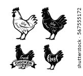 black chicken symbol vector... | Shutterstock .eps vector #567555172