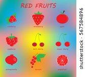 red fruits. | Shutterstock .eps vector #567584896