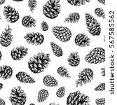 pine cone  seamless pattern.... | Shutterstock .eps vector #567585562