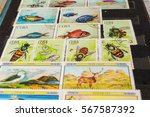 stamp collecting. philatelic.... | Shutterstock . vector #567587392