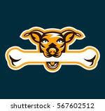 logo dog holding bone in his... | Shutterstock .eps vector #567602512