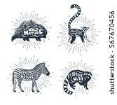 hand drawn textured vintage... | Shutterstock .eps vector #567670456