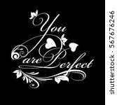 you are perfect.calligraphic... | Shutterstock .eps vector #567676246