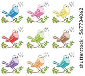 songbirds   nine colorful...