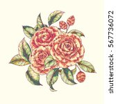 vector hand drawn bouquet of... | Shutterstock .eps vector #567736072