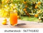 orange juice | Shutterstock . vector #567741832