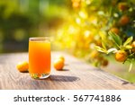 orange juice | Shutterstock . vector #567741886