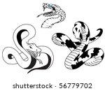snake | Shutterstock .eps vector #56779702
