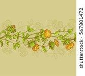 safflower horizontal seamless... | Shutterstock .eps vector #567801472