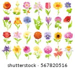 Garden Wild Flower Icon Set....