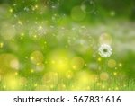 Vector Dandelion Blowing In Th...