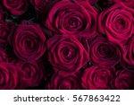Valentines Day Theme....
