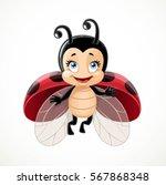 cute ladybug flies on white...