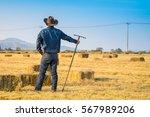 farmer holding a pitchfork | Shutterstock . vector #567989206