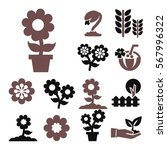 flower icon set | Shutterstock .eps vector #567996322