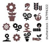 flower icon set | Shutterstock .eps vector #567996322