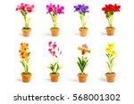 orchid flower plant in pot... | Shutterstock . vector #568001302