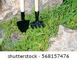garden tools rake shovel | Shutterstock . vector #568157476