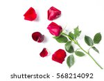 red roses isolated on a white... | Shutterstock . vector #568214092
