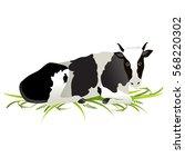 vector illustration. white cow... | Shutterstock .eps vector #568220302