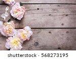 fresh  pink peonies flowers on... | Shutterstock . vector #568273195