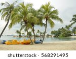 coconut tree and beach ... | Shutterstock . vector #568291495