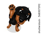 Cute Rottweiler Dog At The...