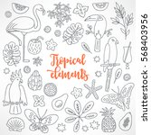set of hand drawn tropical... | Shutterstock .eps vector #568403956
