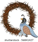 a quail is sitting on a nest...   Shutterstock .eps vector #56841427