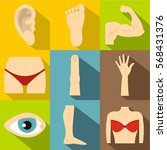 body parts icons set. flat...   Shutterstock .eps vector #568431376