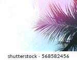 palm tree leaves on sky... | Shutterstock . vector #568582456