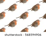 acrylic robin pattern | Shutterstock . vector #568594906