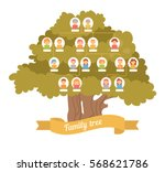family tree. genealogy ... | Shutterstock .eps vector #568621786