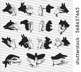 hand shadow animal puppets | Shutterstock .eps vector #568637665