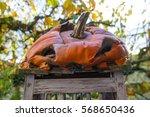 Decaying Halloween Pumpkin On ...