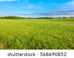 fresh green field of grass in... | Shutterstock . vector #568690852