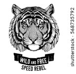 wild tiger wild cat be wild and ... | Shutterstock . vector #568735792