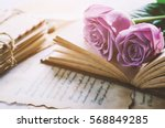 Small photo of Close up of violet purple rose flower with love letters and feather quill, Rose and old paper with vintage and vignette tone