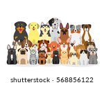 group of dogs and cats | Shutterstock .eps vector #568856122