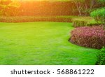green grass with the sun in the ... | Shutterstock . vector #568861222