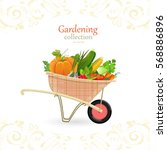 vintage garden cart with... | Shutterstock .eps vector #568886896