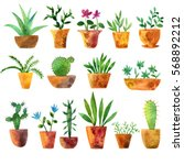 watercolor drawing house plants ... | Shutterstock . vector #568892212