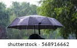 a person with an umbrella in... | Shutterstock . vector #568916662