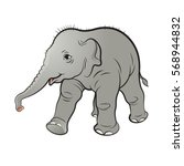 color cute baby elephant walk... | Shutterstock .eps vector #568944832