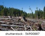 clear cut in british columbia. | Shutterstock . vector #56900887