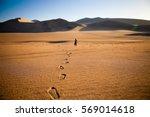 Walking Alone In The Desert...